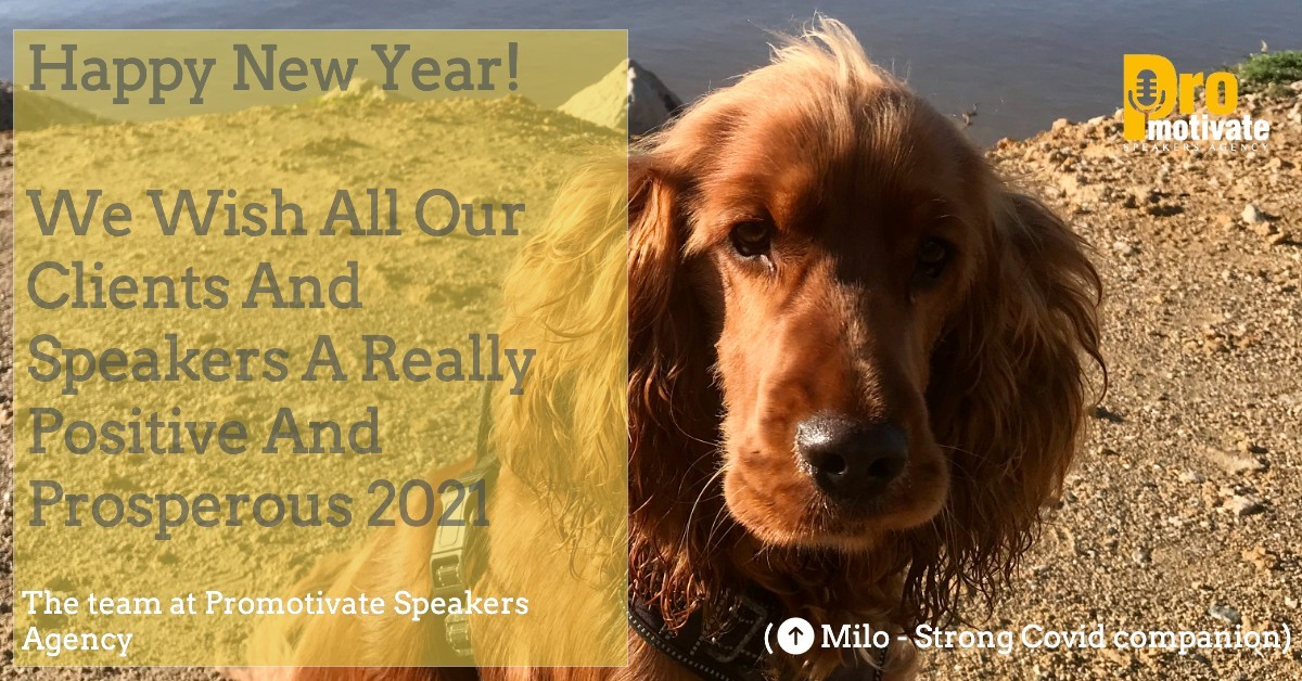 Promotivate Happy New Year 2021 - Happy New Year from Promotivate Speakers Agency